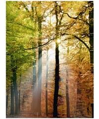 Leinwand 60/80 cm HOME AFFAIRE grün
