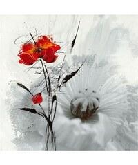 PREMIUM PICTURE Wandbild Mohn rot