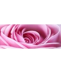 Leinwandbild Rose 160/55 cm HOME AFFAIRE rosa