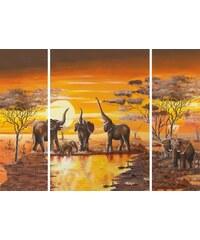 HOME AFFAIRE Bild Kunstdruck Elefantentränke (3-tlg.) orange