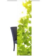 Schiebegardine LEAF (1 Stück mit Zubehör) HOME WOHNIDEEN grün H/B: 245/60 cm