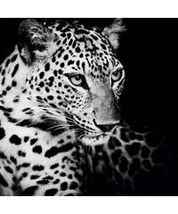 HOME AFFAIRE Deco Block Könige der Natur - Leopard 90/90 cm schwarz
