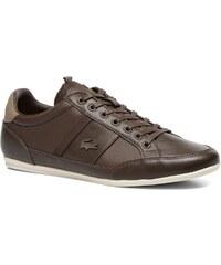 Lacoste - Chaymon Prm - Sneaker für Herren / braun