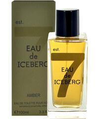 Iceberg Eau de Iceberg Amber 100ml EDT M