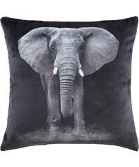 """Home Linen Coussin imprimé """"velours"""" Eléphant env. 45x45 cm en 100% polyester"""