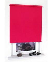 LIEDECO Seitenzugrollo Kettenzugrollo Uni Verdunkelung Fixmaß rot 10 (H/B: 180/202 cm),6 (H/B: 180/122 cm),7 (H/B: 180/142 cm),8 (H/B: 180/162 cm),9 (H/B: 180/182 cm)