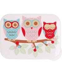 Svačinový box Owl