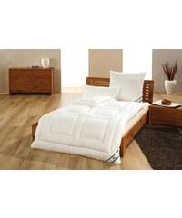 Frankenstolz Couette 135x220 cm - 420 gr/m² avec tissu 100% coton et garnissage tencel !