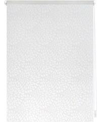 LICHTBLICK Seitenzugrollo Lichtblick Klemmfix Dekor Drops Lichtschutz Fixmaß ohne Bohren weiß 7 (H/B: 180/120 cm),8 (H/B: 180/140 cm)