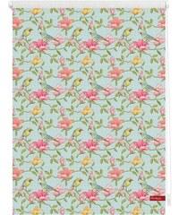 Seitenzugrollo Lichtblick Klemmfix Dekor Birds Lichtschutz Fixmaß ohne Bohren LICHTBLICK grün 7 (H/B: 150/120 cm)