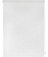 LICHTBLICK Seitenzugrollo Lichtblick Klemmfix Dekor Henna Lichtschutz Fixmaß ohne Bohren weiß 7 (H/B: 180/120 cm),8 (H/B: 180/140 cm)