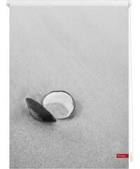 Seitenzugrollo Lichtblick Klemmfix Dekor Muschel Lichtschutz Fixmaß ohne Bohren LICHTBLICK schwarz 7 (H/B: 150/120 cm)