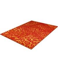 Teppich Trend-Teppiche Kolibri 11066 Leoparden Design TREND TEPPICHE orange 2 (B/L: 80x150 cm),3 (B/L: 120x170 cm),4 (B/L: 160x230 cm),6 (B/L: 200x290 cm)