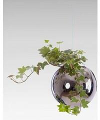 Závěsný květináč Flying Jungle 160 mm Stříbrný Evervit