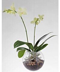 Závěsný květináč Flying Orchids 160 mm Skleněný Evervit