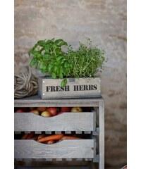 Garden Trading Dřevěný truhlík s květníčky Fresh herbs