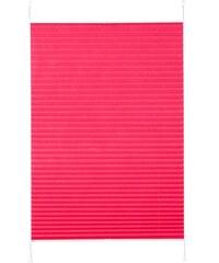 K-HOME Plissee-Faltenstore Klemmfix Pisa im Festmaß ohne Bohren Lichtschutz (1 Stck.) rot 1 (H/B: 130/40 cm),10 (H/B: 210/70 cm),11 (H/B: 210/80 cm),2 (H/B: 130/50 cm),3 (H/B: 130/60 cm),4 (H/B: 130/7