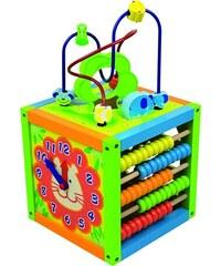 ANDREU Toys Multifunkční kostka