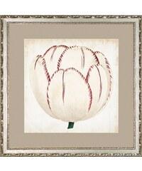 G&C gerahmter Kunstdruck »Pop Floral Rose Motiv 2«, 50/50 cm