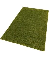 Hochflor-Teppich Shaggy 50 Höhe 50 mm gewebt Bruno Banani grün 8 (B/L: 280x380 cm)