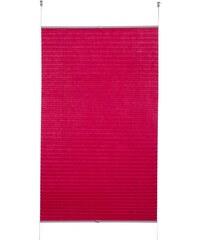 Klemmfix-Plissee Siena (1 Stück) ohne Bohren Verdunkelung K-HOME rot 1 (H/B: 130/40 cm),10 (H/B: 210/70 cm),11 (H/B: 210/80 cm),2 (H/B: 130/50 cm),3 (H/B: 130/60 cm),4 (H/B: 130/70 cm),5 (H/B: 130/80