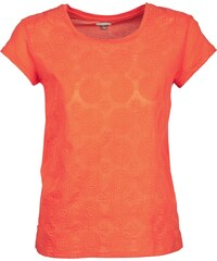 T-Shirt AOMA von Bensimon