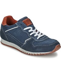 Bullboxer Chaussures FERZOU
