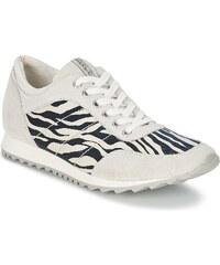 Tosca Blu Chaussures HERSE