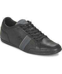 Lacoste Chaussures ALISOS 116 1