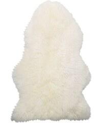 Kožešina White Sheep
