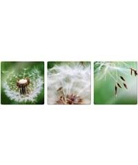 HOME AFFAIRE Glasbild Fliegerschirmchen 3-tlg. grün