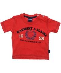 HARMONT&BLAINE TOPS
