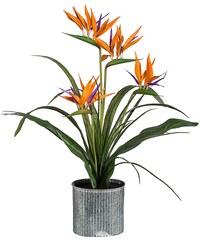 Kunstpflanze »Strelizienarrangement« inkl. Pflanzgefäß