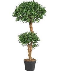 Kunstpflanze »Podocarpusbaum« (H: 95 cm)