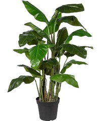 Kunstpflanze »Taropflanze« inkl. Pflanzgefäß (H: 140 cm)