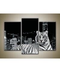 Xdecor Městský tygr (75 x 50 cm) - Třídílný obraz