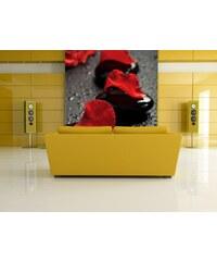 Xdecor Růže s kameny (126 x 84 cm) - Fototapeta na zeď