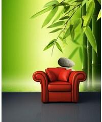Xdecor Kamení s bambusem (126 x 115 cm) - Fototapeta na stěnu