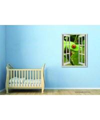 Xdecor Pohled žáby (80 x 62 cm) - Okno živá dekorace