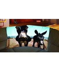 Xdecor Oslíci 150 x 120 cm - Fleecová deka
