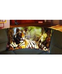Xdecor Tygr 150 x 120 cm - Fleecová deka