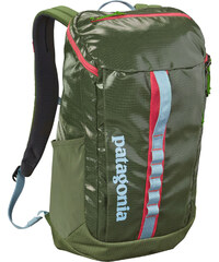 Patagonia Black Hole 25 L sac à dos ordinateur portable spanish moos