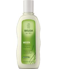 Weleda Weizen Schuppen-Shampoo Haarshampoo Haarpflege 190 ml