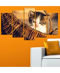 Lesara 5 Panneaux muraux avec chatons