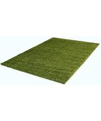 TREND TEPPICHE Hochflor-Teppich Trend-Teppiche Shaggy 8000 Höhe 30 mm grün 1 (B/L: 60x100 cm),2 (B/L: 80x150 cm),31 (B/L: 120x170 cm),4 (B/L: 160x230 cm)