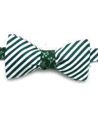 Alfons.cz Zeleno-bílý pánský motýlek oboustranný