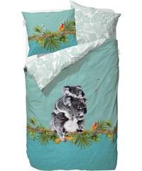 Kinderbettwäsche, Covers & Co, »Koala«, mit Koala-Motiv