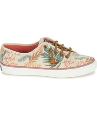Sperry Top-Sider Chaussures SEACOAST SEAWEED PRINT