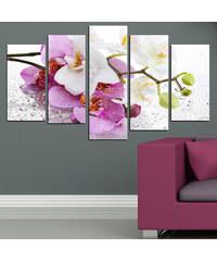 Lesara 5 Pièces murales Orchidée