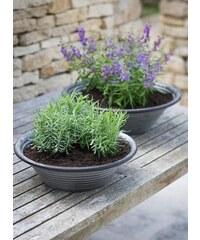 Garden Trading Mísa na květiny Charlbury Větší